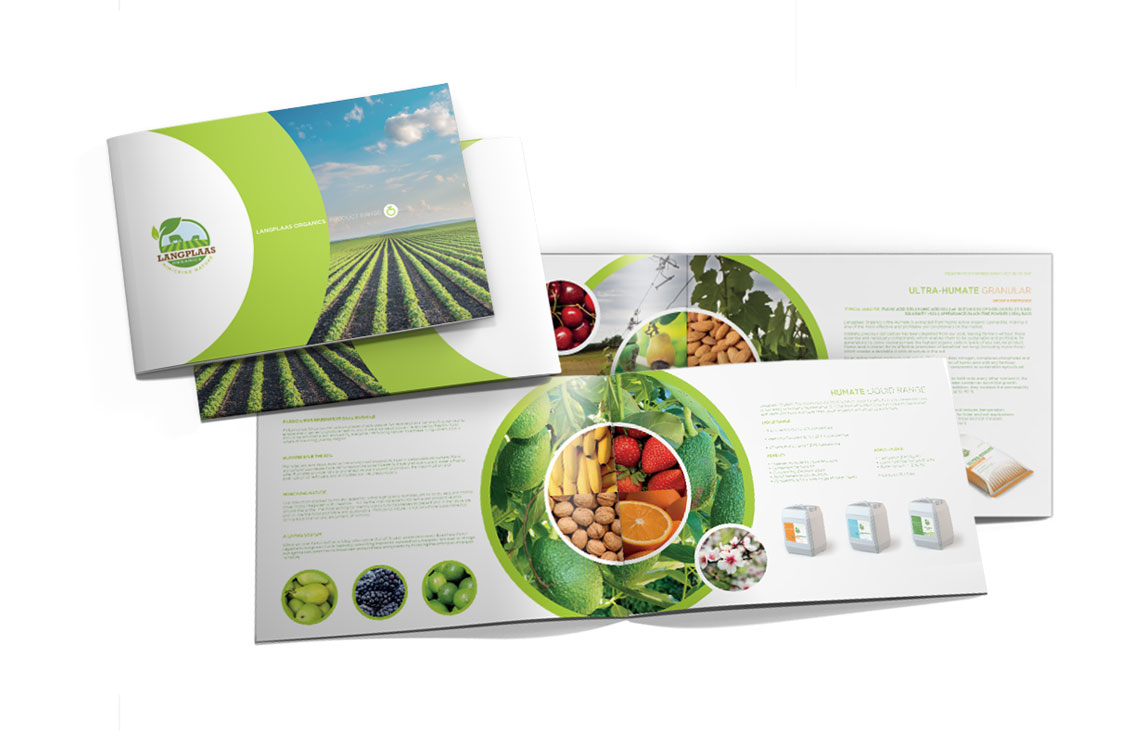 graphic design | Brochure Design