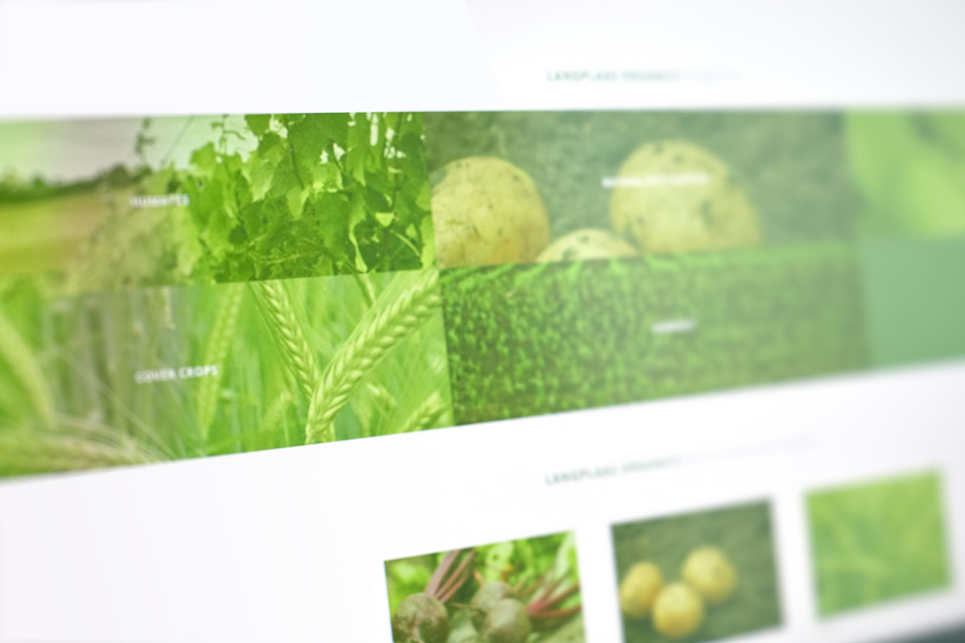 Langplaas Organics Web Design by Black Rooster Studios.
